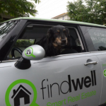 Findwell's Bear is known to go on runs to the bank to get treats