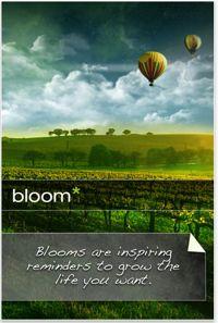 bloom-app1