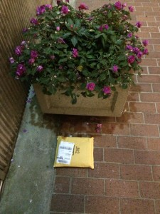 The Ontrac carrier's super-sneaky hiding spot for my package