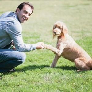 DogVacay CEO Aaron Hirschhorn