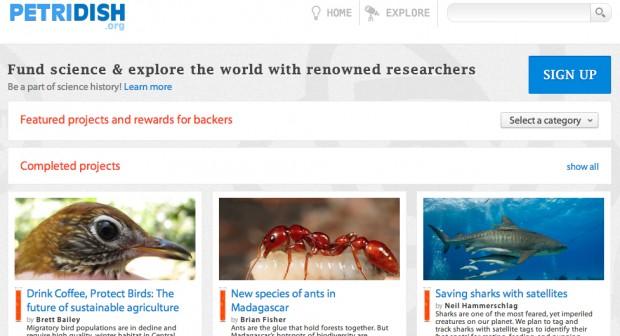 petridish-homepage