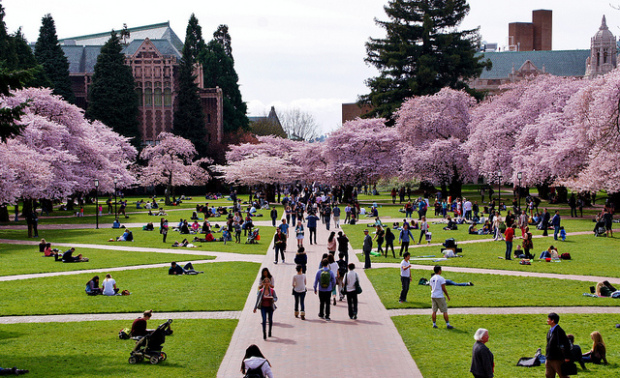 University of Washington (Photo via Flickr user sea-turtle. )