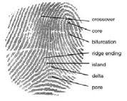 By DoD_Biometrics_Consortium_Conference_13_Sep_2007.pdf: Unknown derivative work: Geo Swan [Public domain], via Wikimedia Commons