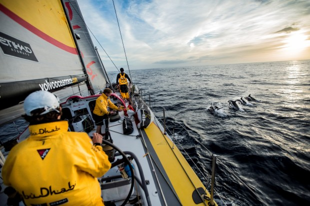 "Dolphins escort ""Azzam"" as she leads the race en route to the Canary Islands under a beautiful sunset.  Leg 1 onboard Abu Dhabi Ocean Racing."