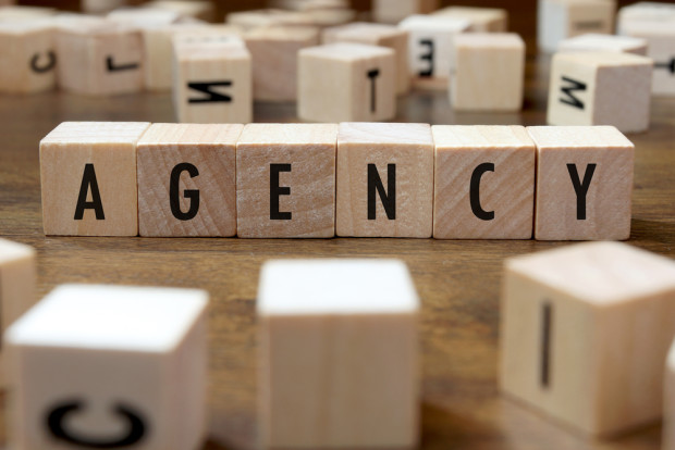 Agencies offer different career paths from startups and big companies. Photo: Shutterstock