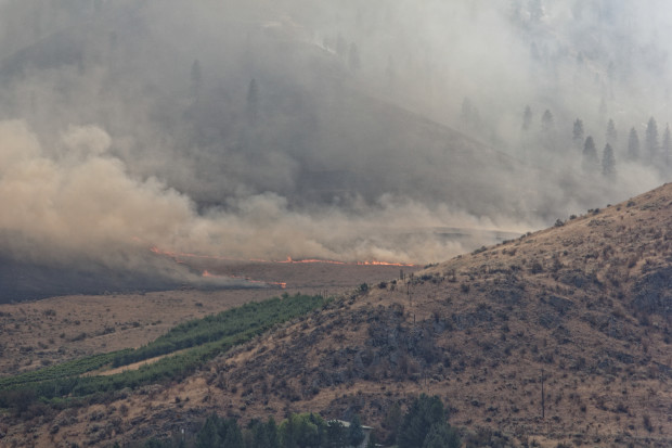 Smoke billows from wildfires that scorched Eastern Washington in August 2015. Photo: Ben Brooks, Flickr Creative Commons.