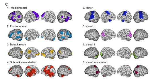 Photo via Nature Neuroscience