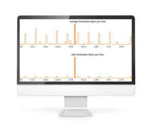 SignalSense analyses traffic for anomalies.