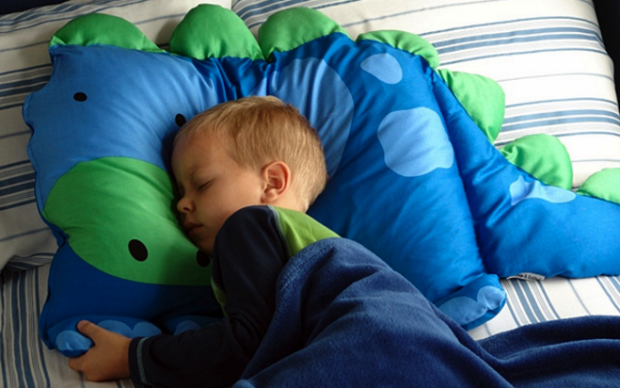 The real deal: A Milo & Gabby dinosaur pillowcase, as pictured on the company's site.