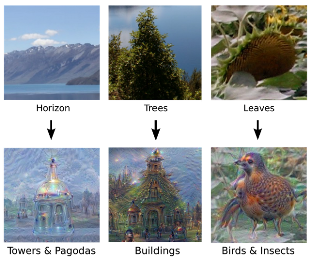 The DeepDream project showed how Google's machine learning system interpreted various images