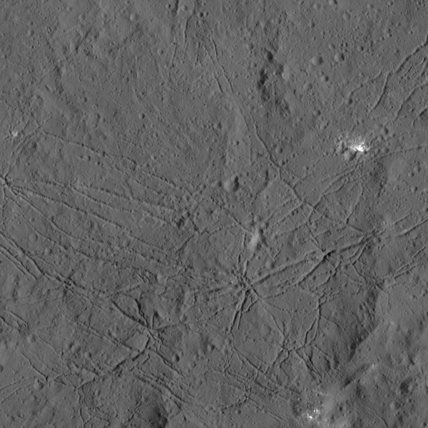 This Dec. 21 picture from NASA's Dawn spacecraft shows the fractured floor of Dantu Crater on Ceres. This cracking may have resulted from the cooling of impact melt, or when the crater floor was uplifted after formation. Similar fractures are seen in Tycho, one of the youngest large craters on Earth's moon. (Credit: NASA / JPL-Caltech / UCLA / MPS / DLR / IDA)
