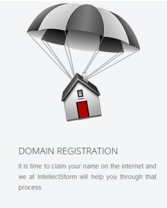 IntellectStorm provides web services to businesses in Guyana.