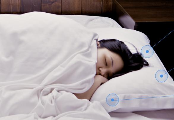 Duolingo pillow