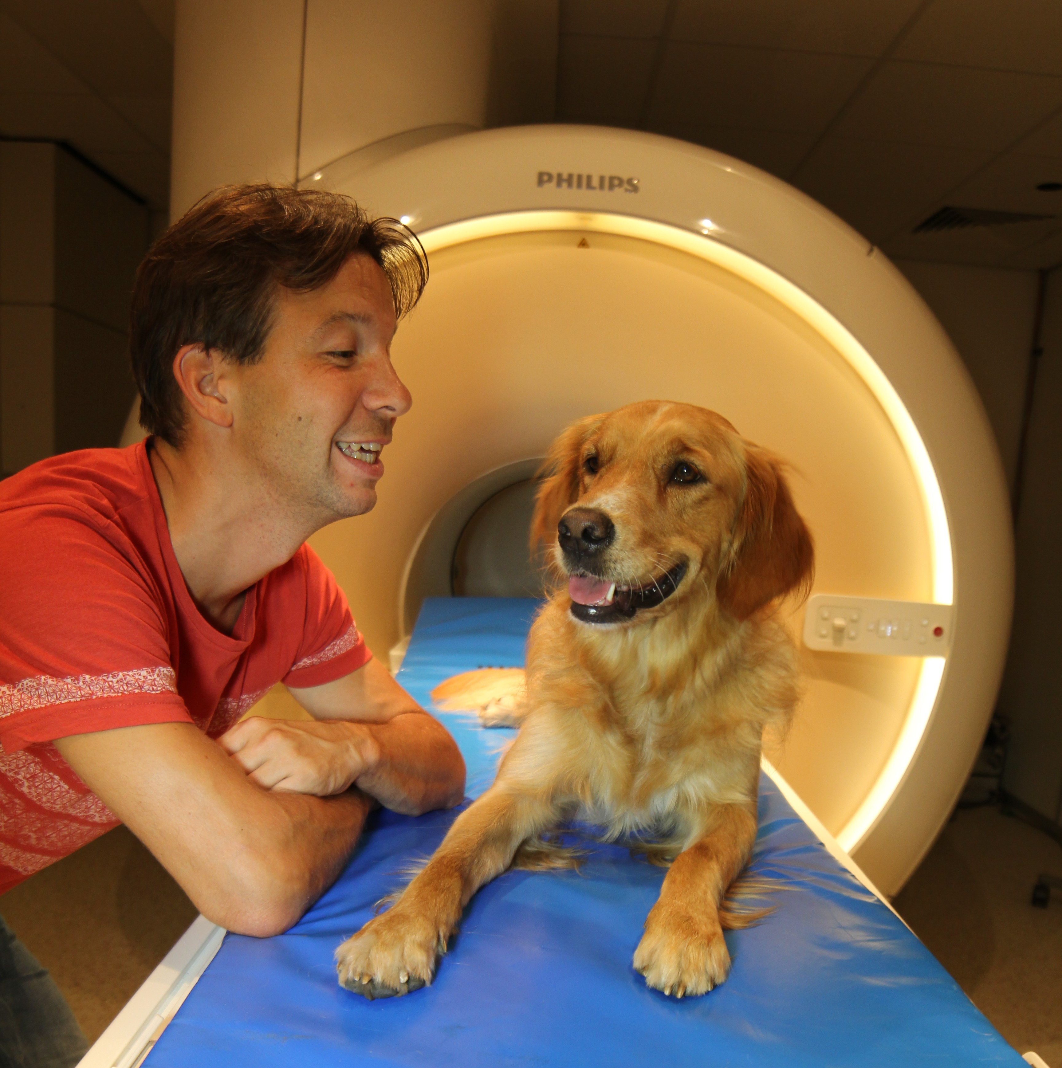 Brain scans show dogs get what we say and how we say it