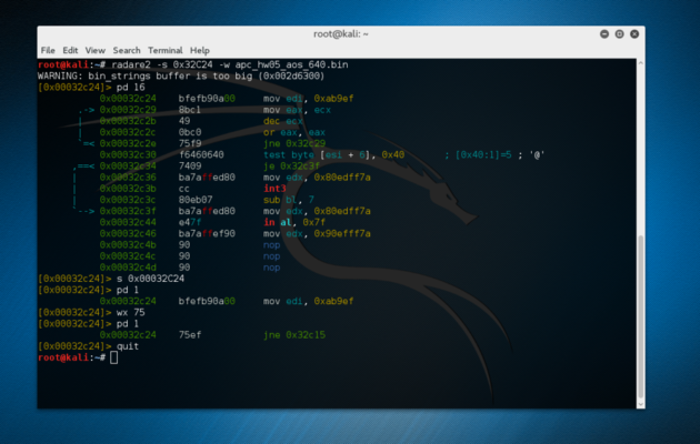 Figure 3: Running the show's Radware2 commands on the real APC firmware.