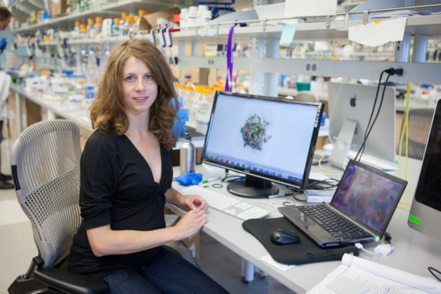 Ingrid Swanson Pultz, Chief Scientific Officer at PvP Biologics and a researcher at the University of Washington's Institute for Protein Design. (University of Washington Photo)