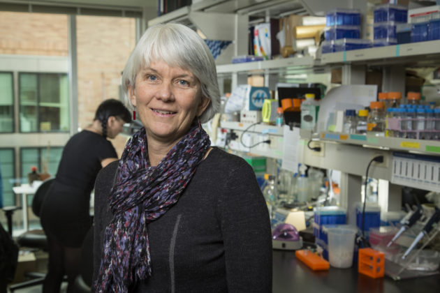 Julie Overbaugh, Fred Hutch researcher and recipient of the lifetime Nature Award for Mentoring in Science. (Fred Hutch Photo / Robert Hood)