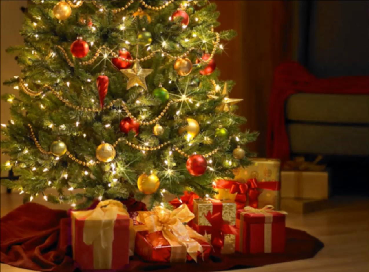 The christmas tree story xmas tree story books for blog the enchant