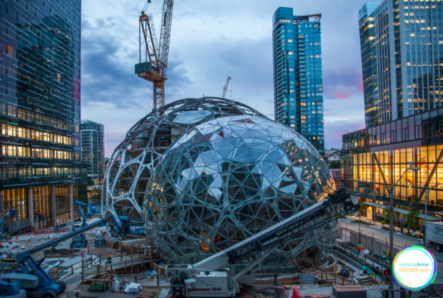 Amazon construction