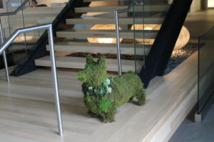 Inside Tableau S New Seattle Hq An Ode To Data Visualization Collaboration And Landscaped Dog Art Geekwire
