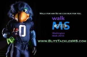 Blitz Profile Walk MS
