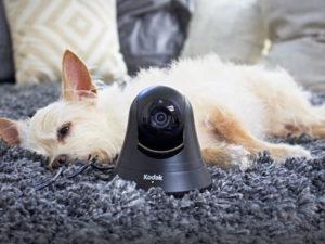 Kodak HD WiFi Pet Monitor