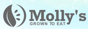 mollysfridge