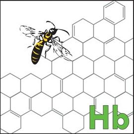 hivebiologo1