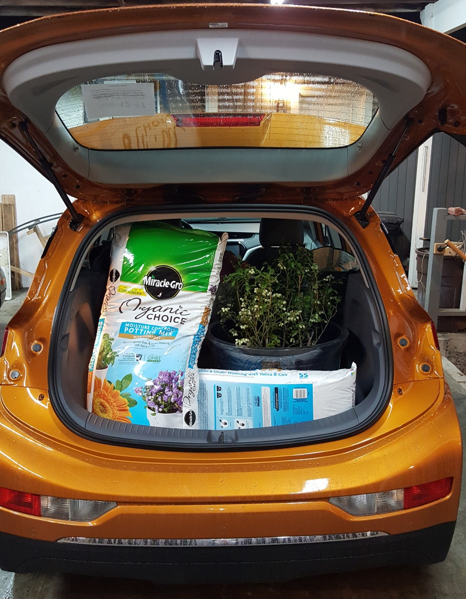 Chevrolet Bolt EV loaded up with cargo after a trip to Costco