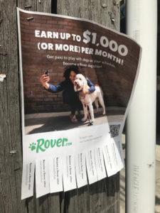 Rover.com flyer