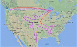 Dreamliner outline flight