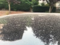 Ash on automobile roof