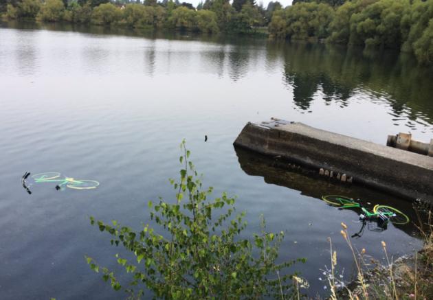 LimeBikes lake