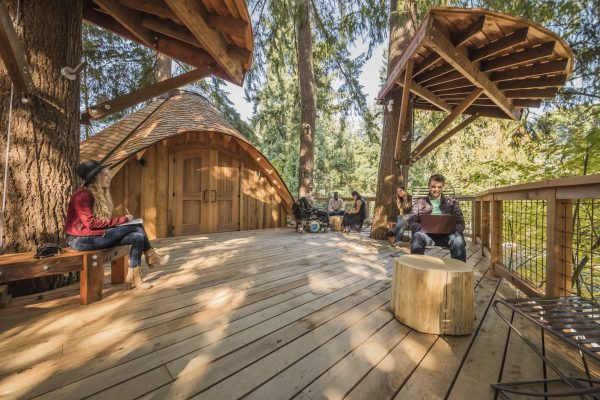 Microsoft's new treehouse meeting spaces take advantage of ...