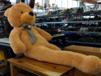 Long legged Teddy bear
