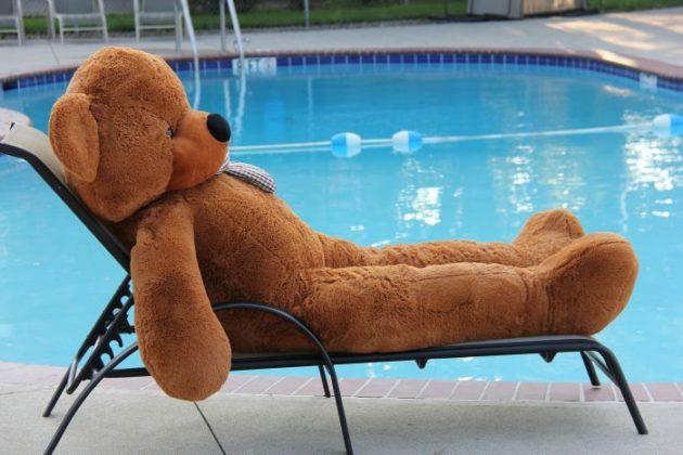 Joyfay Teddy bear