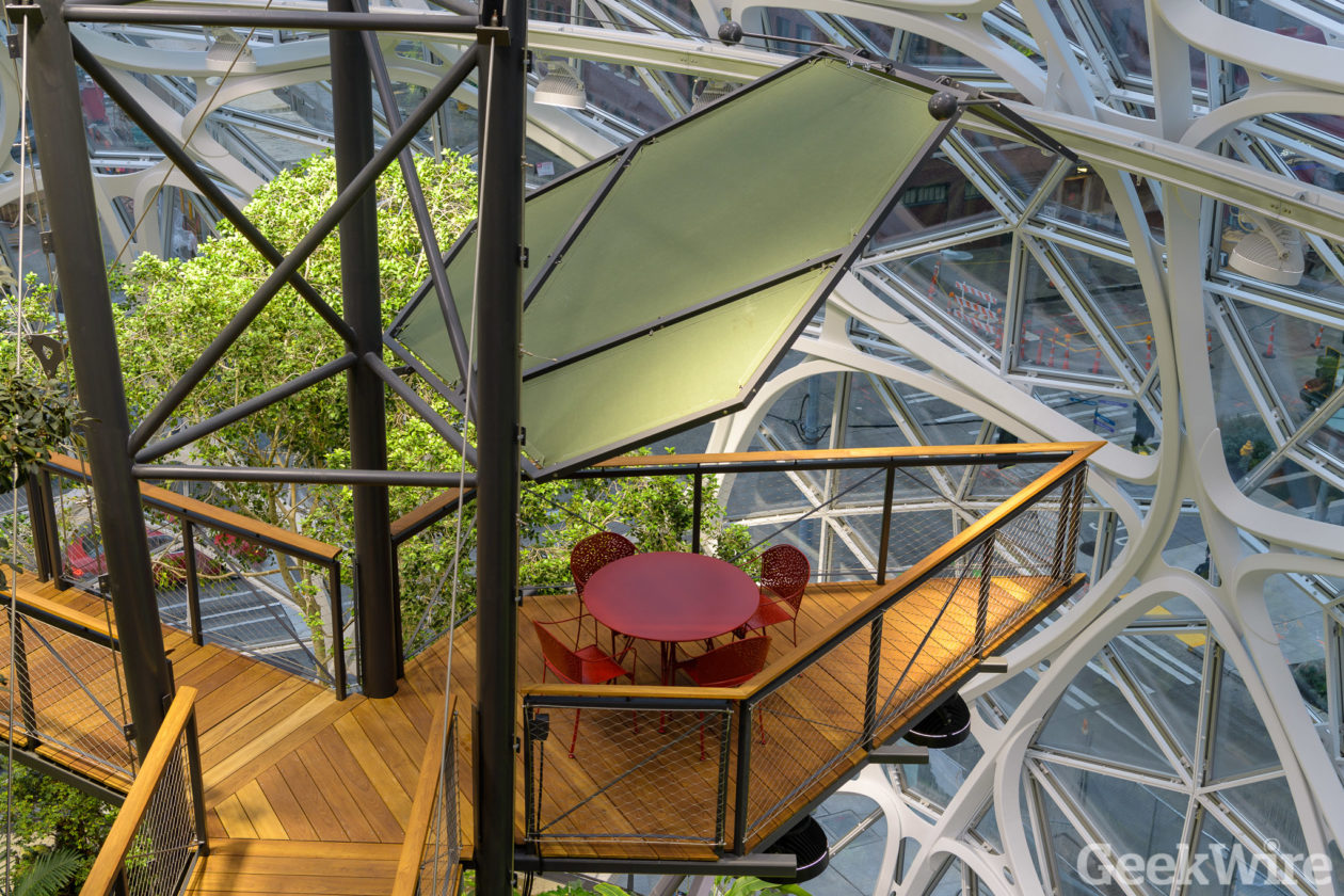 amazon to open spheres to the public twice a month  turning over a new leaf at seattle landmark