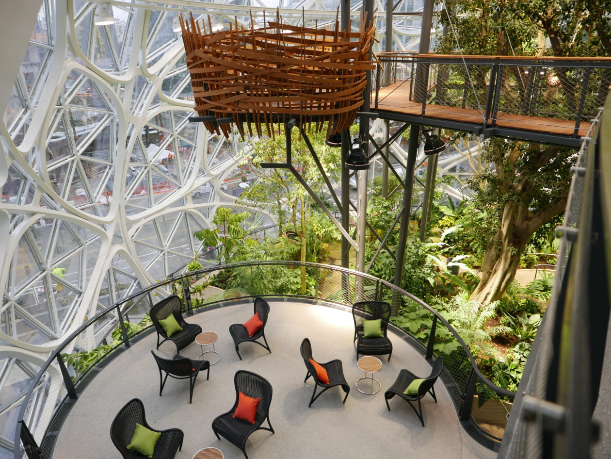 Welcome to Amazon's jungle: Inside the Spheres, where ...
