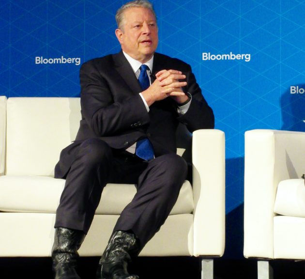 Al Gore predicts machine learning and other tech advances will usher in a 'sustainability revolution'