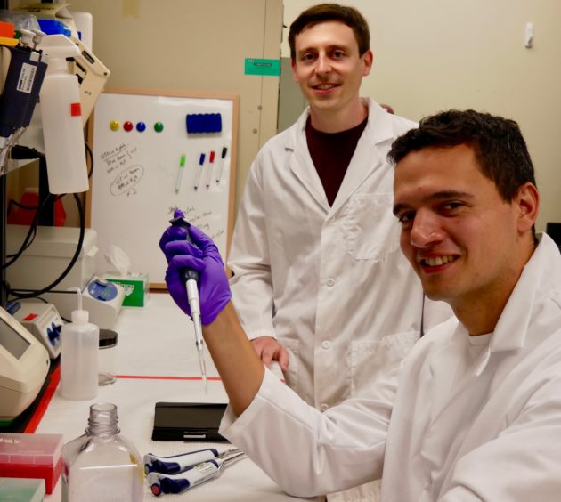Clinical drug screening startup A-Alpha Bio awarded Small Business