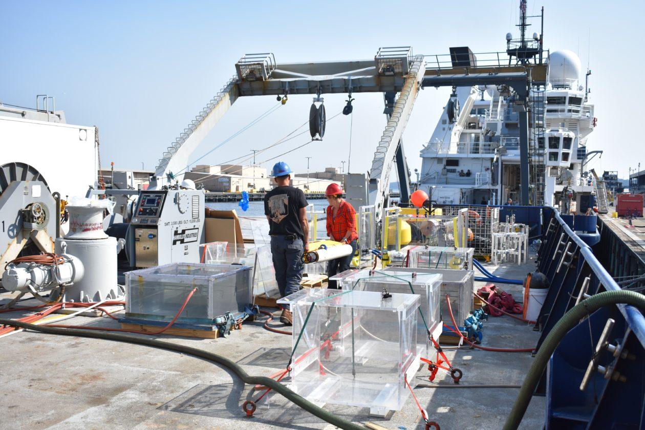Incubators on deck