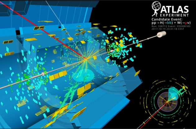 What does the Higgs boson turn itself into? Large Hadron Collider confirms theory