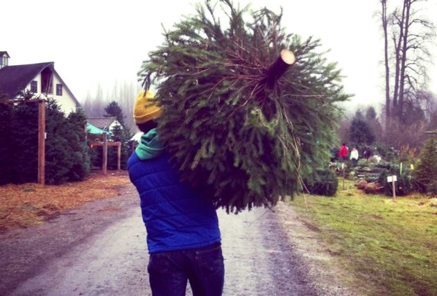 geekwires kurt schlosser carries a freshly cut tree from a farm near seattle during christmas past geekwire photo