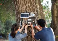 AI device to predict wildfires