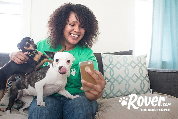 Rover acquires U K -based dog care company DogBuddy, accelerating