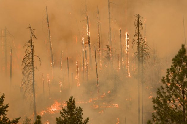 Northwest wildfires