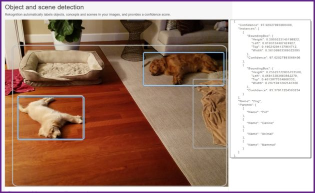 Amazon Web Services' Rekognition image analysis tool can now locate objects within a photo