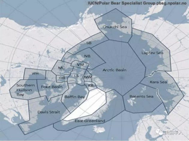 Polar Bear map