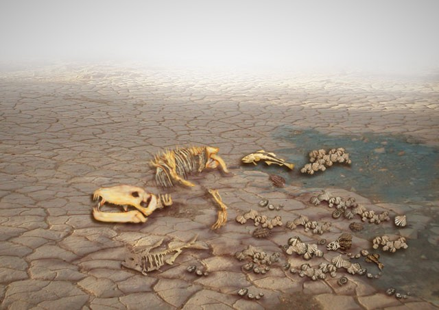 """Image result for extinction """"the great dying"""""""