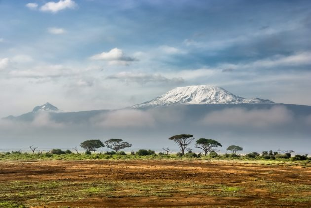 Why this cancer researcher (and survivor) is climbing Kilimanjaro to raise money to study cancer